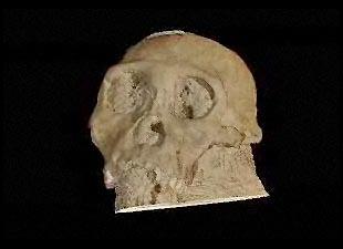 Our Oldest Human Ancestor, Australopithecus Sediba, Lived 1.98 Million Years Ago