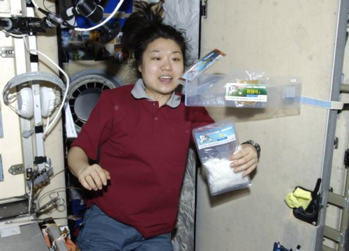 South Korea's Only Astronaut Quits Space Program
