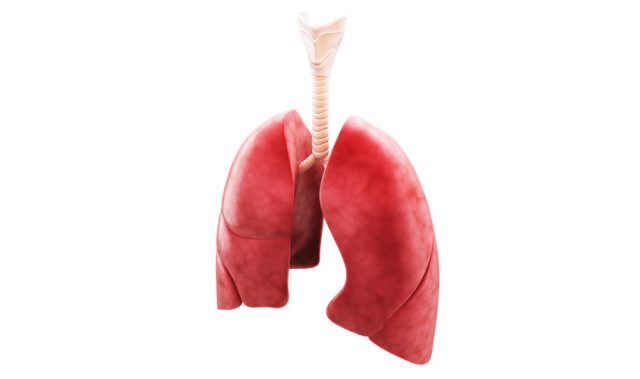 The Importance Of Zinc In Respiratory Diseases